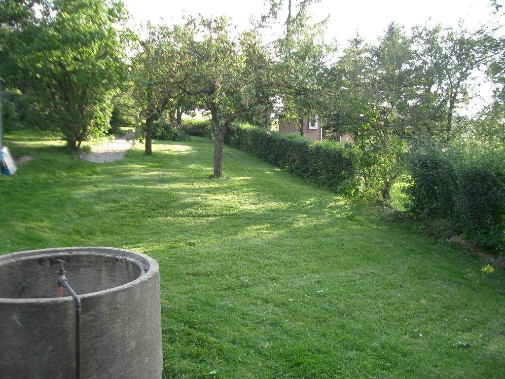 Foto 4 Kleingarten zu verschenken