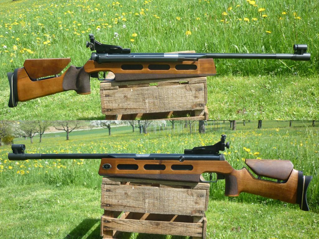 DIANA 75 Match-Luftgewehr - TOP